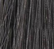 شاه بلوطی تیره 3
